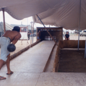 Makeshift bowling alley at a Guantanamo Bay refugee camp, 1990s